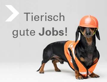 Tierisch gute Jobs!